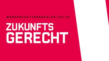Logo Orga-Wahl 2018
